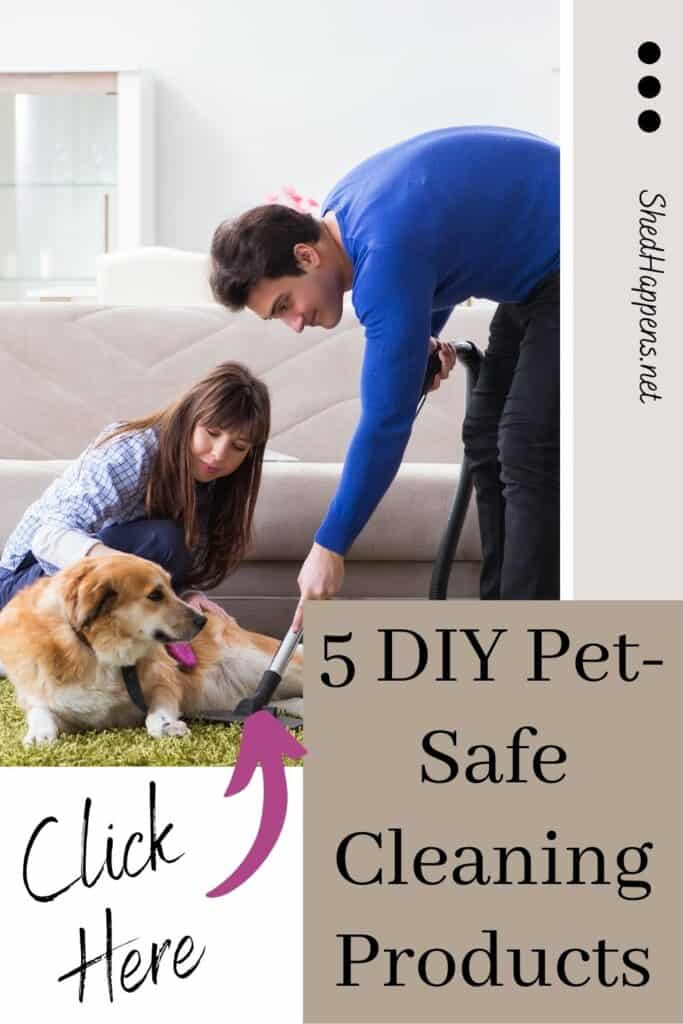 A light brown and white dog being brushed by a woman wearing jeans and a checkered shirt, while the dog is laying on a green carpet. The carpet is being vacuumed by someone wearing a blue shirt and black pants. With the text '5 DIY Pet-Safe Cleaning Products' in the corner.