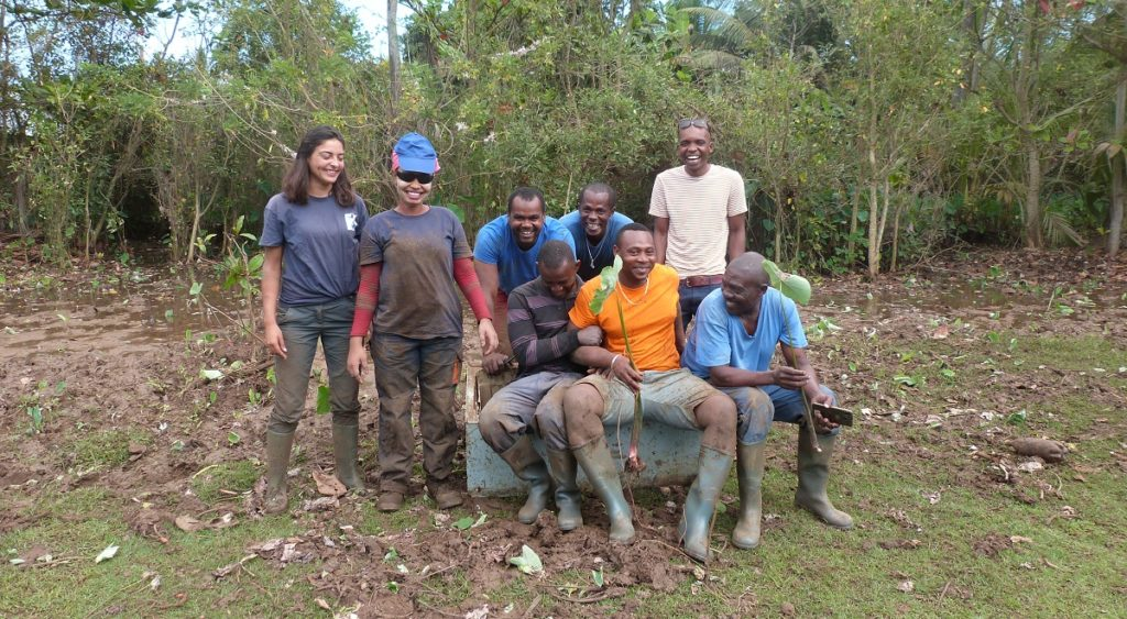 GEPOMAY restoring wet meadows with Mlezi maore and Jardin de Mtsangamouji associations © GEPOMAY