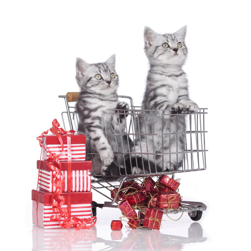 Santa Better Have His Shopping Done