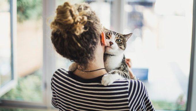 cat hugging woman