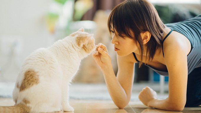 woman giving cat treat
