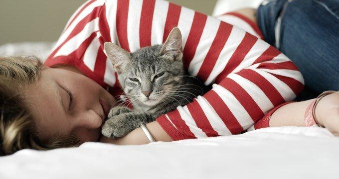 human snuggling cat