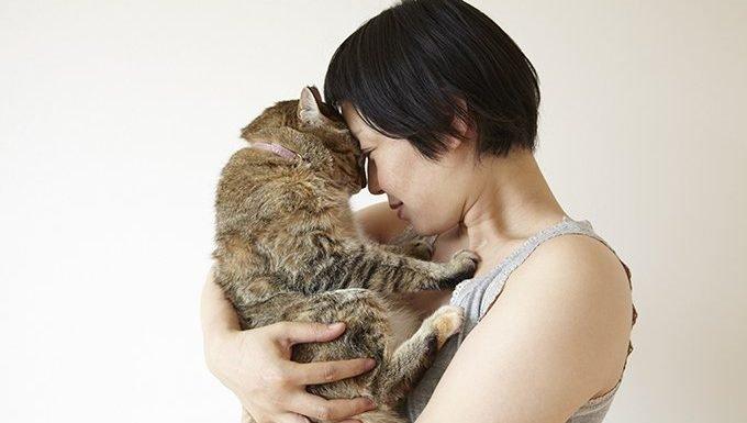 Cancer Cat (June 21 - July 22)