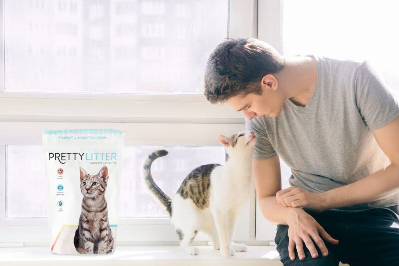 PrettyLitter cat and human