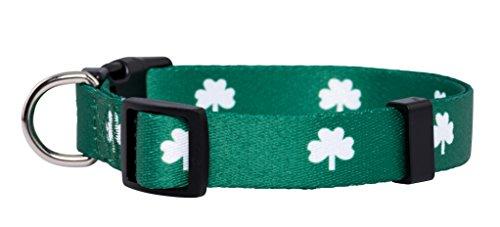 Native Pup St. Patrick's Day Dog Collar