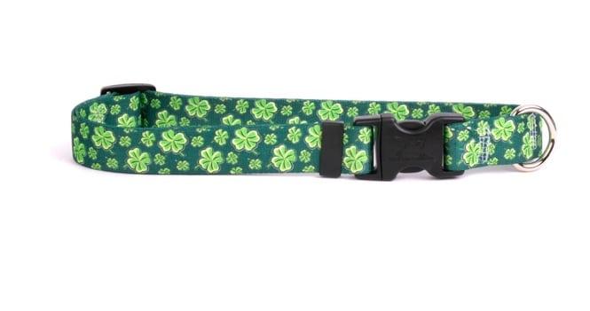 Four-Leaf Clover Collar
