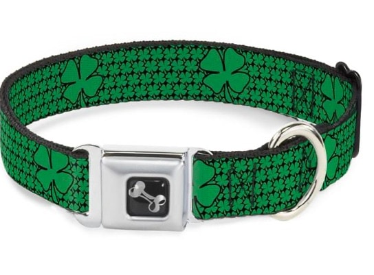 St. Patrick's Day Buckle Collar