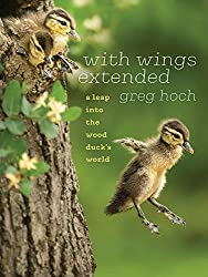 With Wings Extended: A Leap into the Wood Duck's World,by Greg Hoch, University of Iowa Press