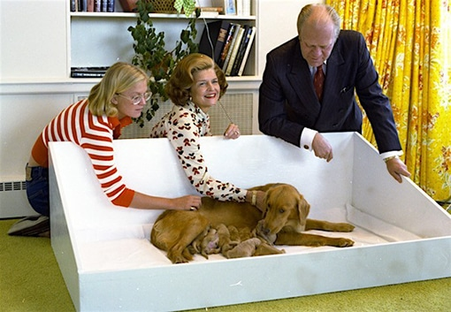 President ford, his wife Betty, and daughter Susan with Liberty and puppies