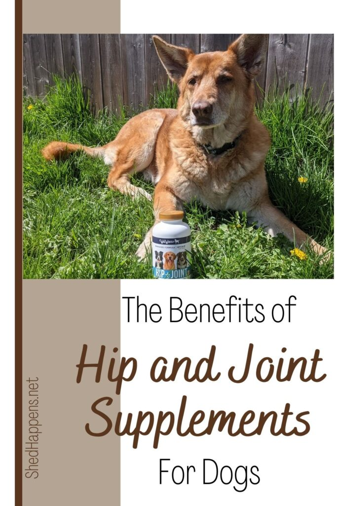 A light brown German Shepherd dog laying in the grass in front of a wooden fence with a bottle of Wag Worthy Naturals in the grass by her front right paw. Text states: the benefits of hip and joint supplements for dogs.