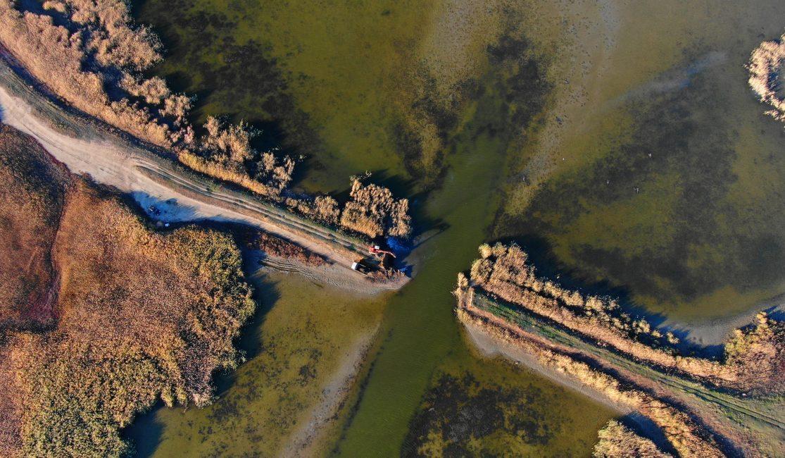 Dam removal in the Danube Delta, by Maxim Yakovlev
