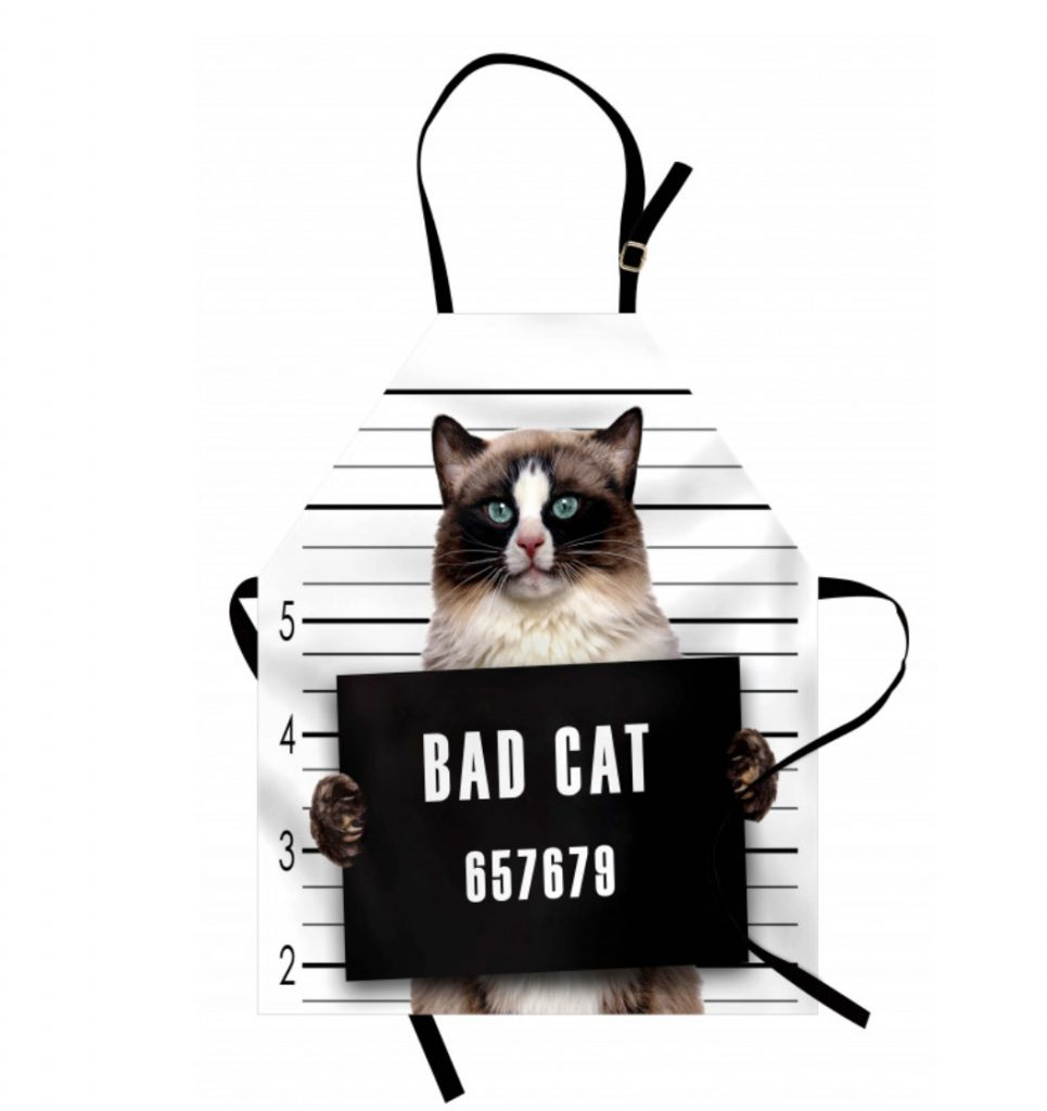 apron with kitty on front being booked for jail