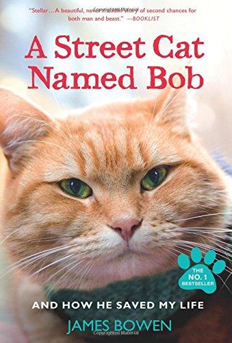book: A Street Cat Named Bob