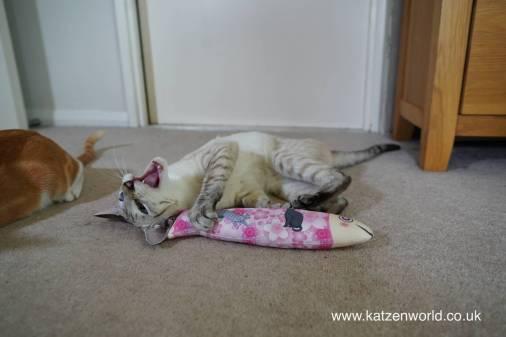Katzenworld Japanese cat toy0029