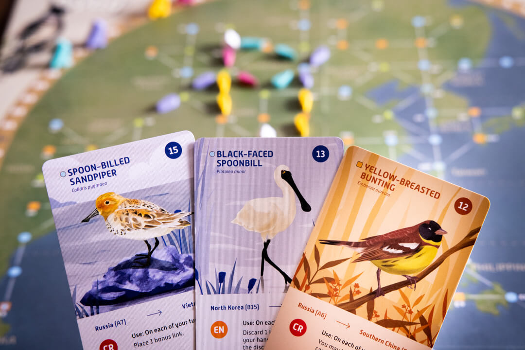 Species showcased in the game match BirdLife conservation priorities