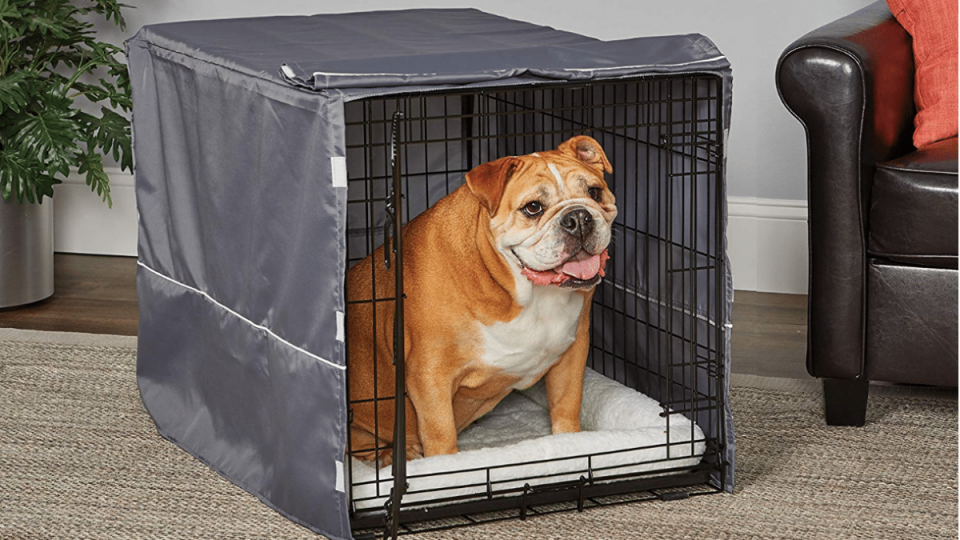 dog in crate with dog crate cover