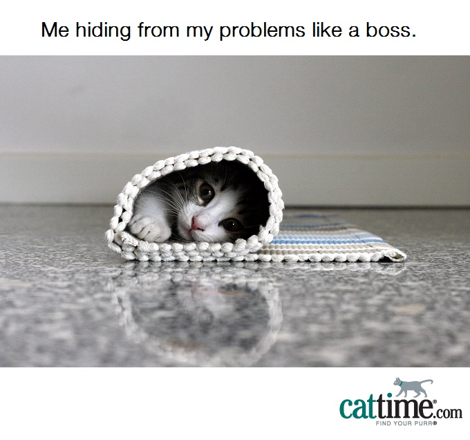 Hiding, BRB