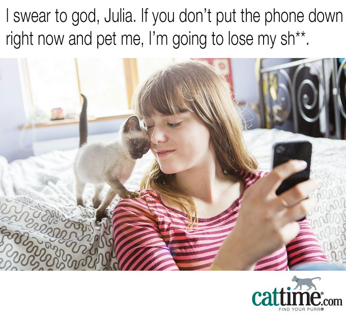 Put Down The Phone