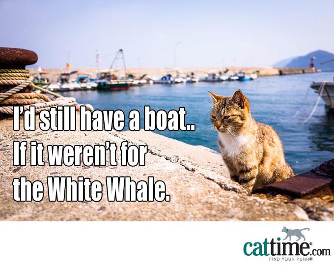 Should I Get A Boat