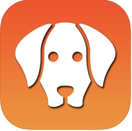 iTrainer App
