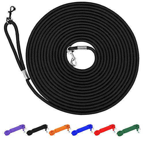 long training leash for dogs in the yard