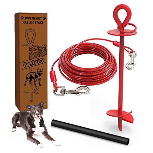 dog yard stake and cable leash