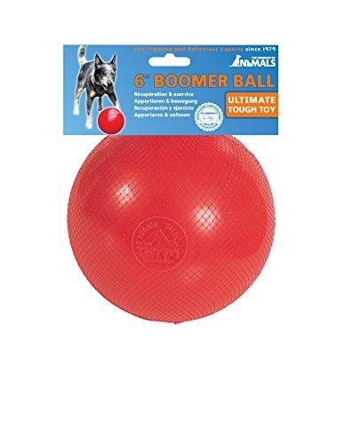 Red Boomer Ball dog ball toy
