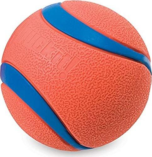 blue and orange Chuck it dog ball toy