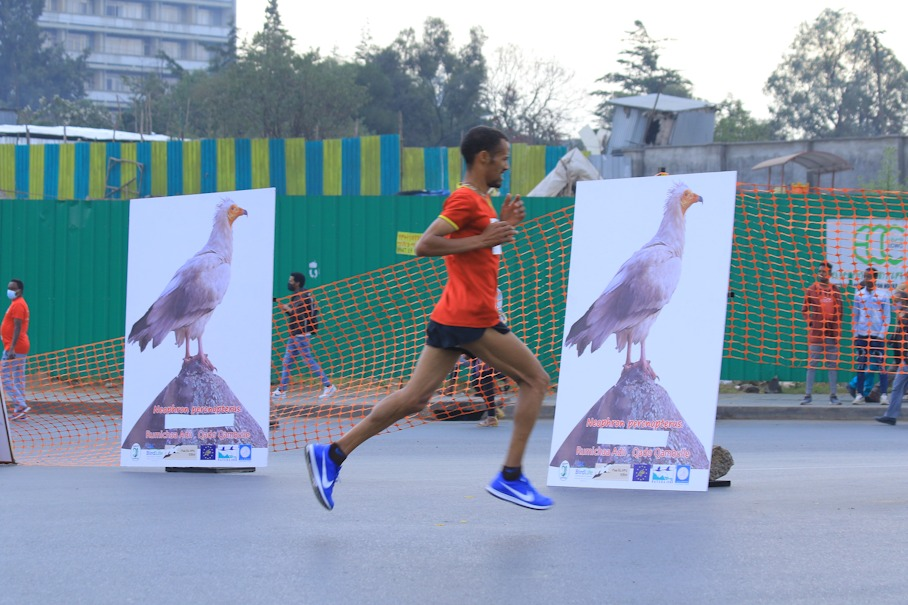 EWNHS promoted bird-safe energy infrastructure at the Great Ethiopian Run © GER