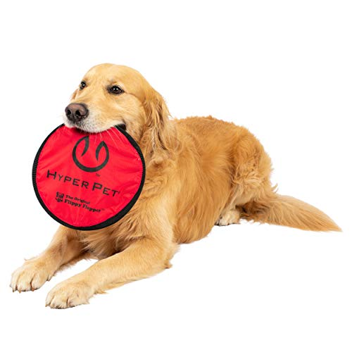 dog lying down holding red Hyper Pet Flippy Flopper fabric frisbee in mouth