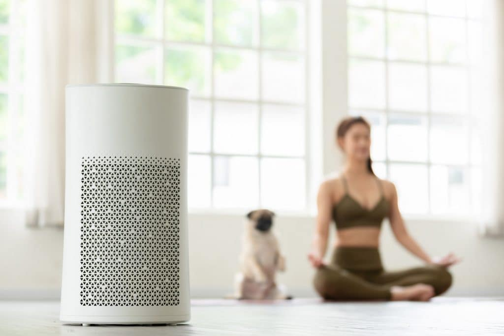 young woman and pug both meditating in background with air purifier in foreground