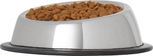 stainless steel tapered cat bowl full of kibble