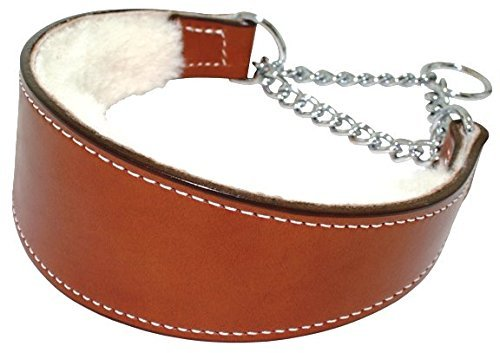 sheepskin-lined leather collar with chain martingale loop