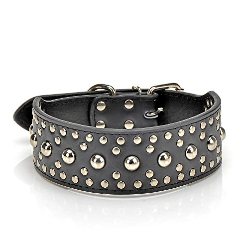 gray studded leather collar