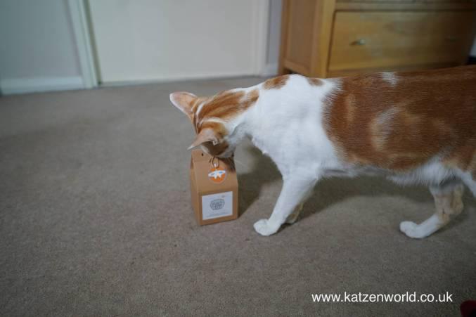 Katzenworld tea toy0000