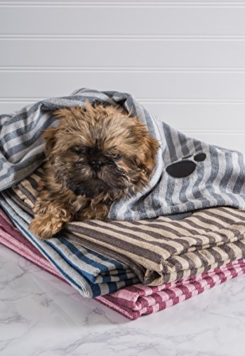 small dog wrapped up in stack of Bone Dry Embroidered Pet Towel with embroidered paw print