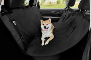 dog lying down on black Frisco Water Resistant Hammock Car Seat Cover in back of car