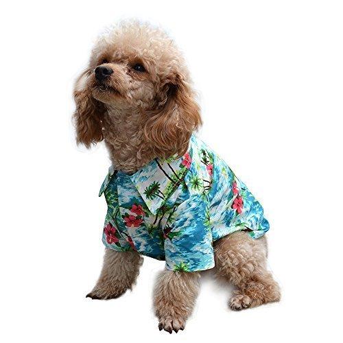 dog wearing Expawlorer Hawaiian Pet Dog Polo Shirt
