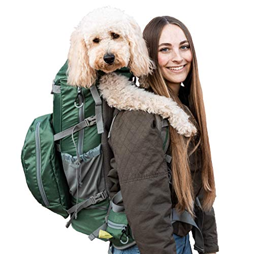 woman carrying dog on her back in green K9 Sport Sack Rover 2 dog carrier backpack