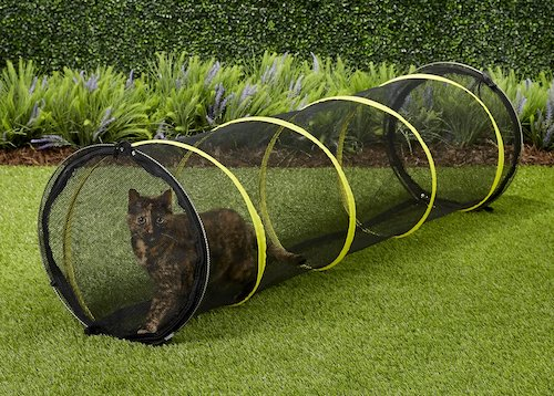 Zip-up mesh play tunnel for kittens