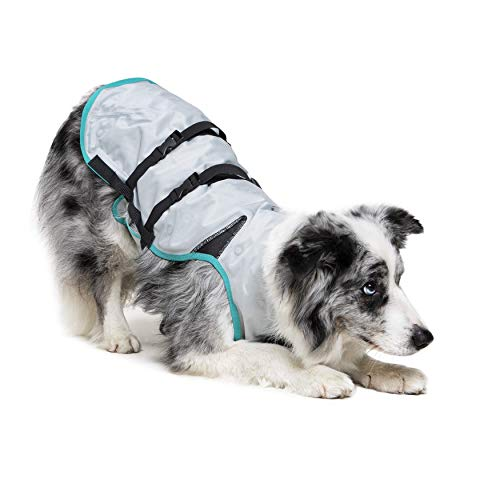 dog bowing wearing silver Suitical Dry Cooling Dog Vest