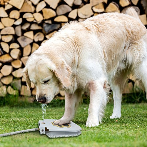 dog drinking from TrioGato outdoor dog water fountain