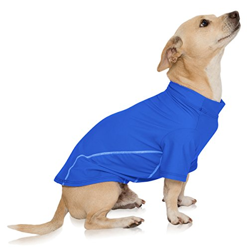 dog wearing solid blue PlayaPup Sun Shirt