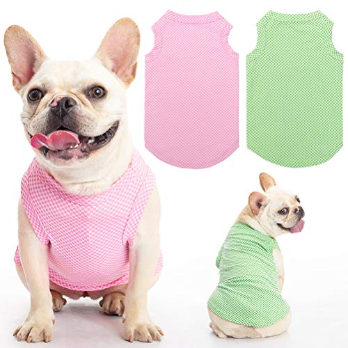 Frenchie wearing Scenereal top in gingham pattern, one in green, one in pink