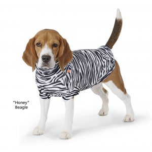 Paikka zebra protective shirt summer dog top
