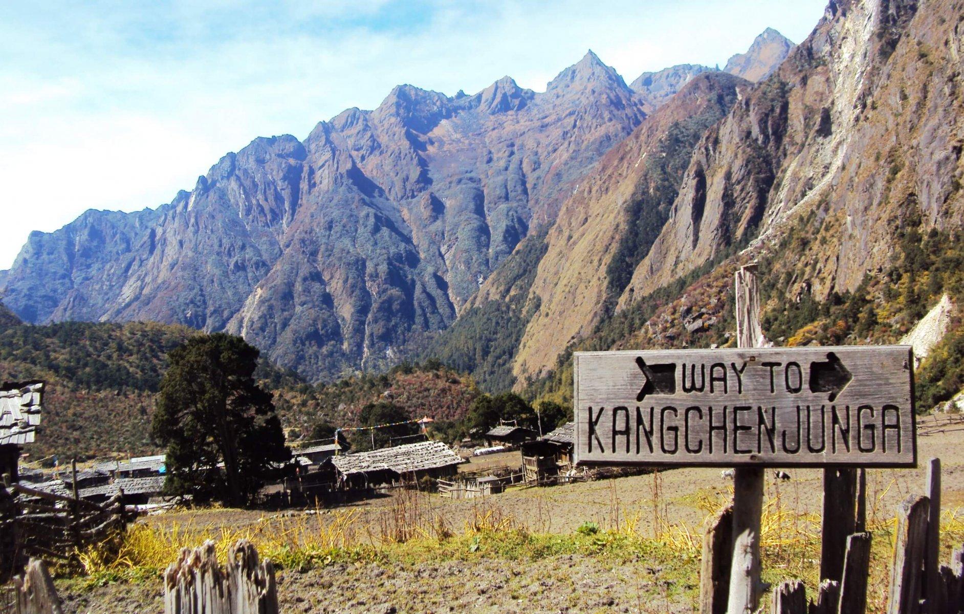 Mai Valley & Kangchenjunga contain medicinal plants found nowhere else © Ujjwal Sherchan