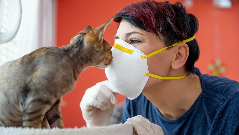 Mid Adult Female Pet Owner Kissing Her Cat With Protective Mask During Coronavirus Pandemic.