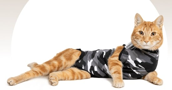 Suitical cat recovery suit